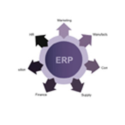 Do You Need an ERP Solution?